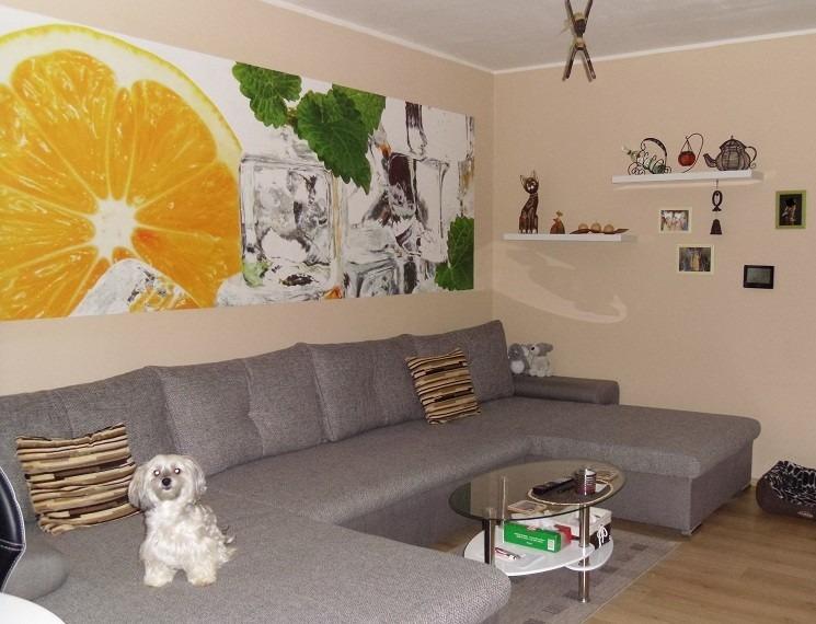 Domek 4×12 2+kk obývací pokoj1